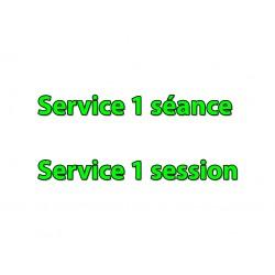 Service une Séance (39€)